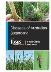 BSES Diseases Cover