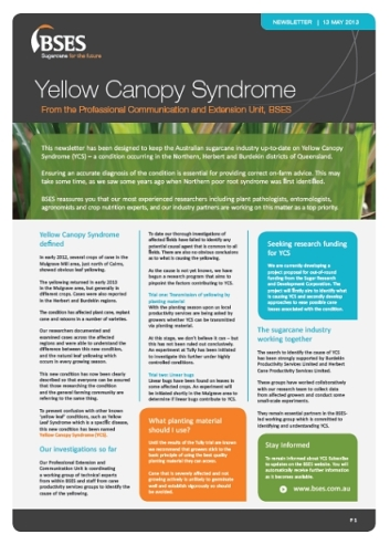 Bses Yellowing of cane May 13