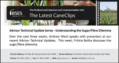 Understanding the sugar fibre dilemma-web