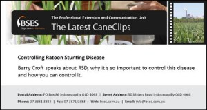 BSES cane clips 130729-web