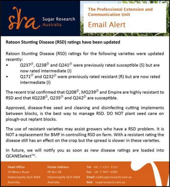 RSD update-web3